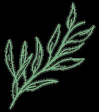 Care Fresh Logo Leaf